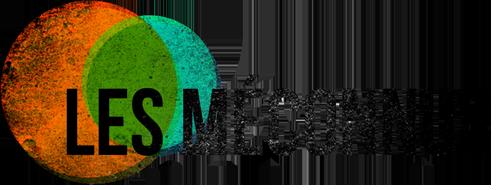 lesmeconnus_logo-noir