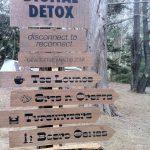 outside-lands-2013-detox