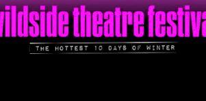 Festival Wildside Theatre 2015 | Une programmation variée et insolite