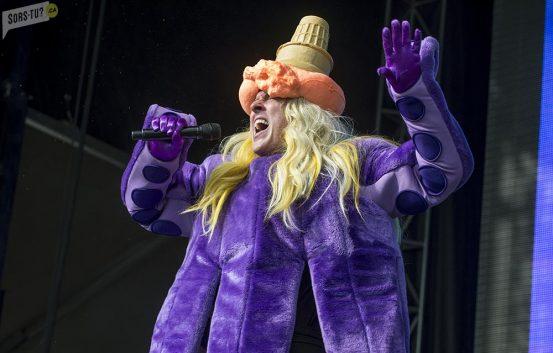 WeirdAlYankovic-RBCbluesfest-Ottawa-festival-Sorstuca-2015-5