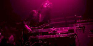 Boris au Ritz P.D.B. | Voir la vie en Pink