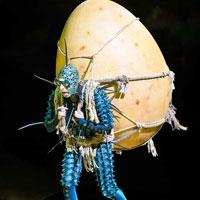 Ovo par le Cirque du Soleil   Plongeon tête la première dans ce nouvel écosystème