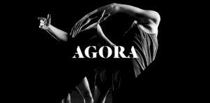 Agora de la danse dévoile sa programmation hiver-printemps 2017 à l'édifice Wilder