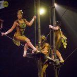 ovo-cirque-du-soleil-laval-2017-041