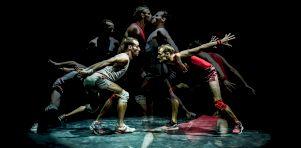 Saison 2019-2020 de La Tohu : Le Cirque dans tous ses états