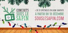Noël dans le parc proposera une série de Concerts sous le sapin en décembre 2020