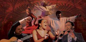 20 ans du Festival du Monde Arabe | 6 grands spectacles à voir!