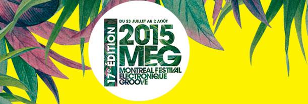 MEG 2015