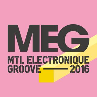 MEG 2016