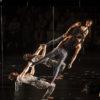 Le spectacle <a href='/artiste/warm/' >Warm</a> du Festival complètement cirque.