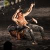 Le spectacle <a href='/artiste/warm/' >Warm</a> du Festival Montréal complètement cirque.